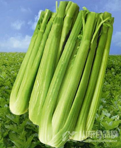 芹菜品牌成为青岛种植业品牌中最独特的一景